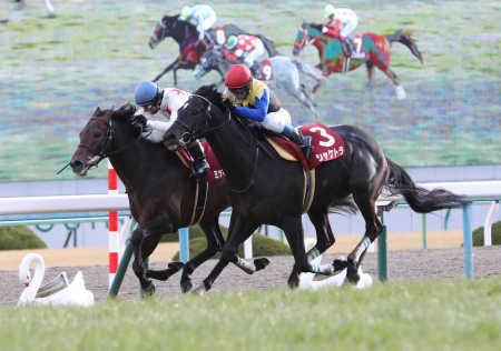 【競馬】今年の4歳でサトノダイヤモンド以外で王道中距離G1勝てそうなのいるか?