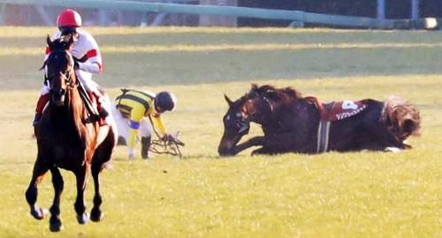 【AJCC】ルメール(シングウィズジョイ競走中止)「前の馬の脚と接触してしまった。僕の体は大丈夫です」