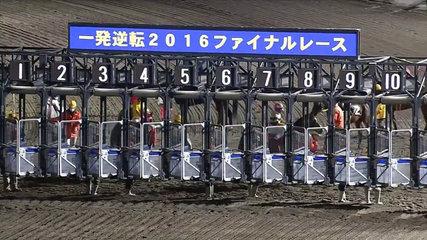 【競馬】JRAも未勝利駄馬を集めた一発逆転ファイナルを最終レースに設けるべき