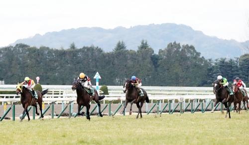 【きさらぎ賞】サトノアーサー川田「頑張ってはくれました。勝ち馬に馬場も合っていたんでしょう」