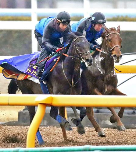 【京都記念】サトノクラウン里見「良馬場でマカヒキと戦いたい。重ではつまらない」