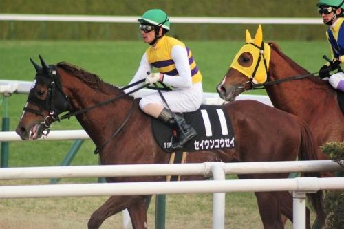 【競馬】西山オーナー、松田大作にブチギレ「バカ者」「あきれています」