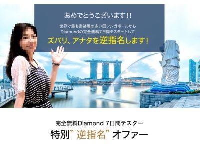 松嶋なお子 Diamond(ダイアモンド)7日間テスター トレンドキャッチビジネス レビュー