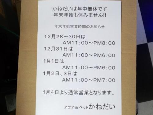 PAP_0205_201612191918409a0.jpg