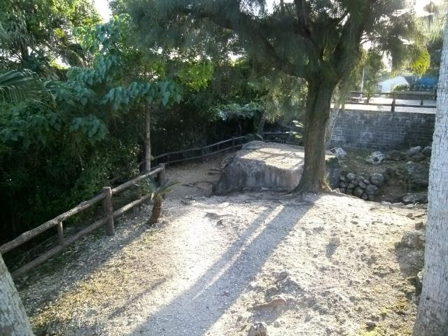 嘉数公園 (14)