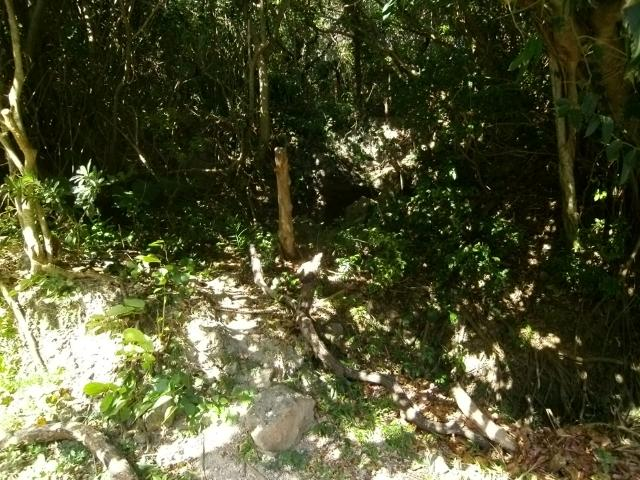 知念岬の陣地壕 (1)