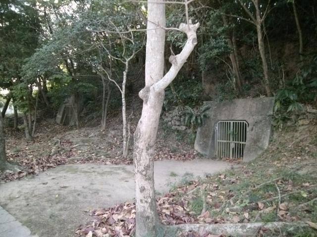田原公園海軍壕 (4)