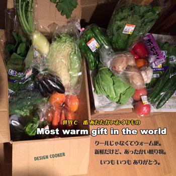 2016 野菜 お届け便 おくりもの