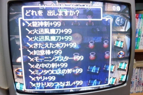 DSC009061 (7)