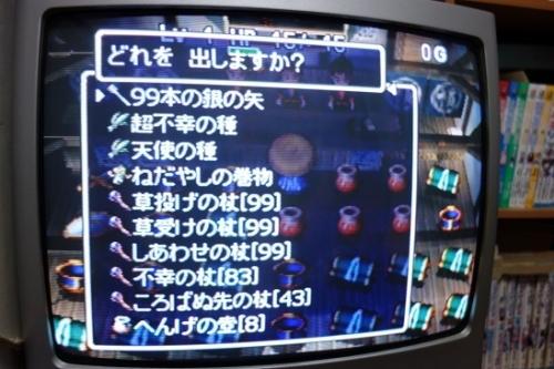 DSC009061 (12)