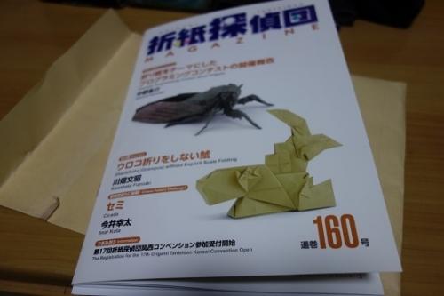 DSC007131.jpg