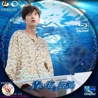 青い海の伝説8BD