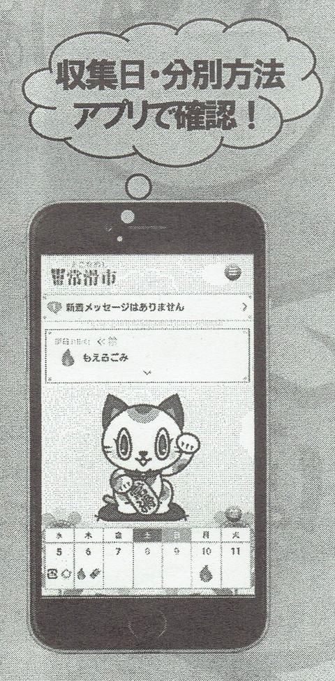 CCF1_000025.jpg