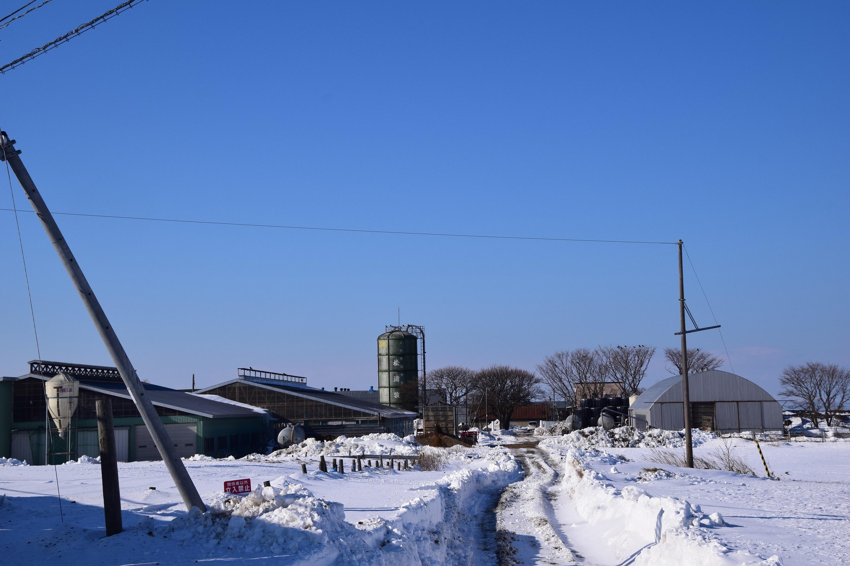 Hanasaki05.jpg