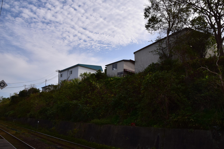 Katsuragawa19.jpg