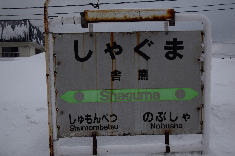 Shaguma01.jpg