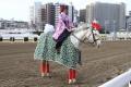 170102 干支の酉の衣装で誘導馬がお出迎え-03