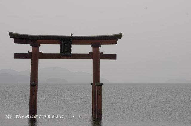 雨の日の白髭神社3