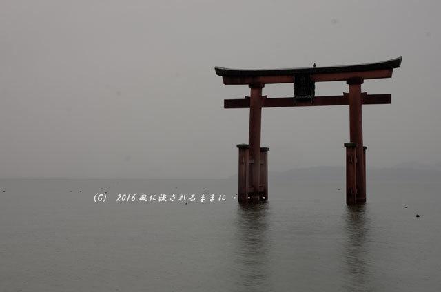 雨の日の白髭神社1