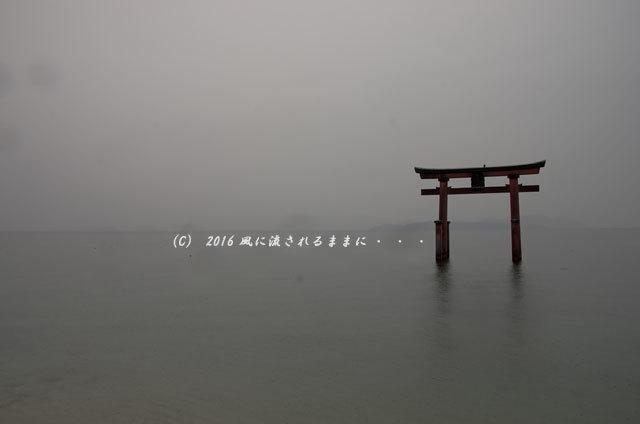 雨の日の白髭神社4