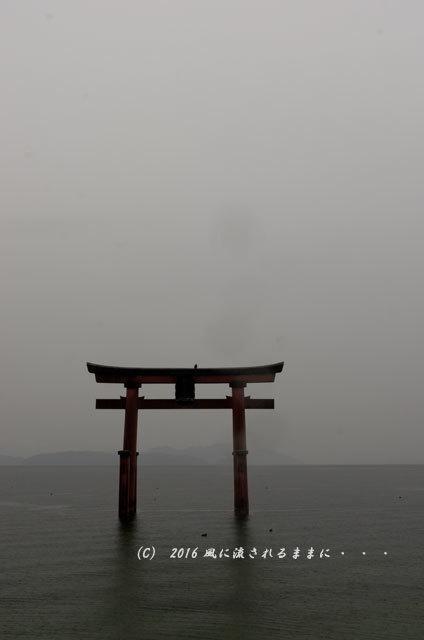 雨の日の白髭神社5