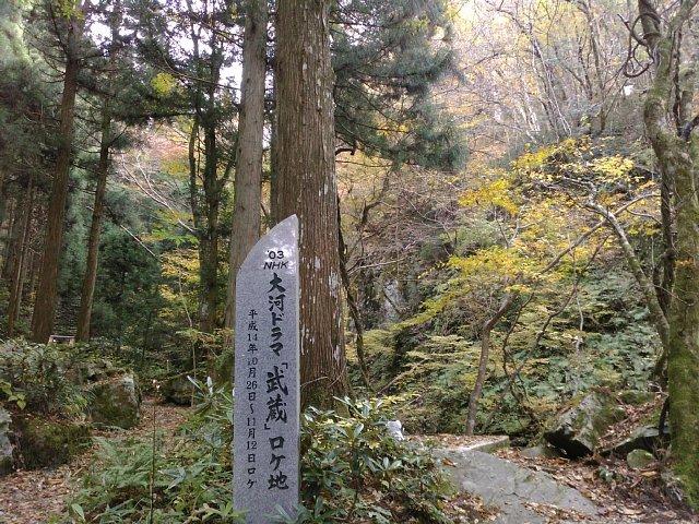 281113yamanori5.jpg