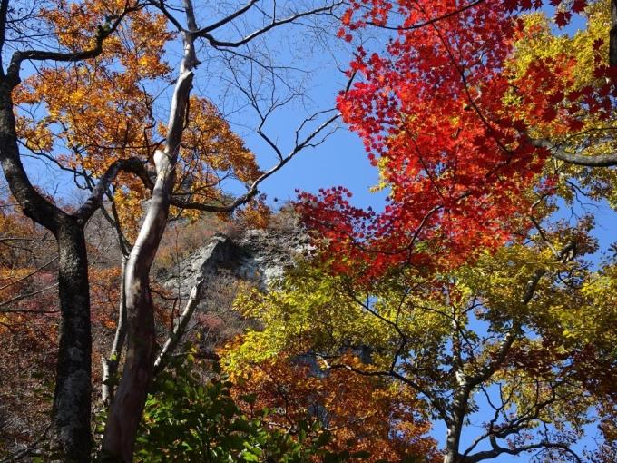 紅葉と岩尾根