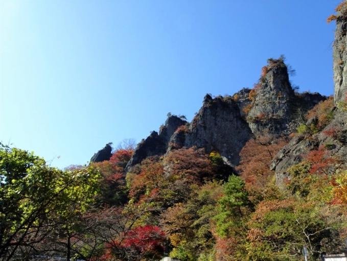 登山口から