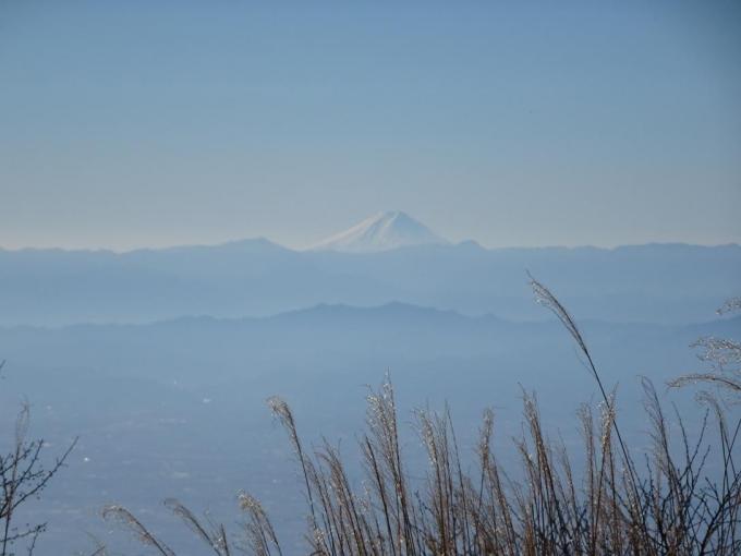 今日は見えた富士山
