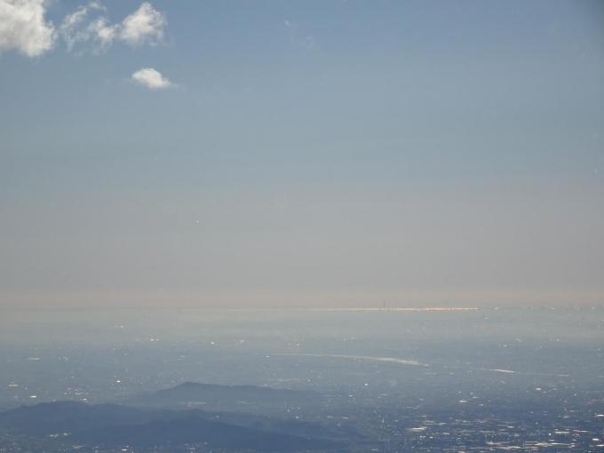 スカイツリー、東京湾も