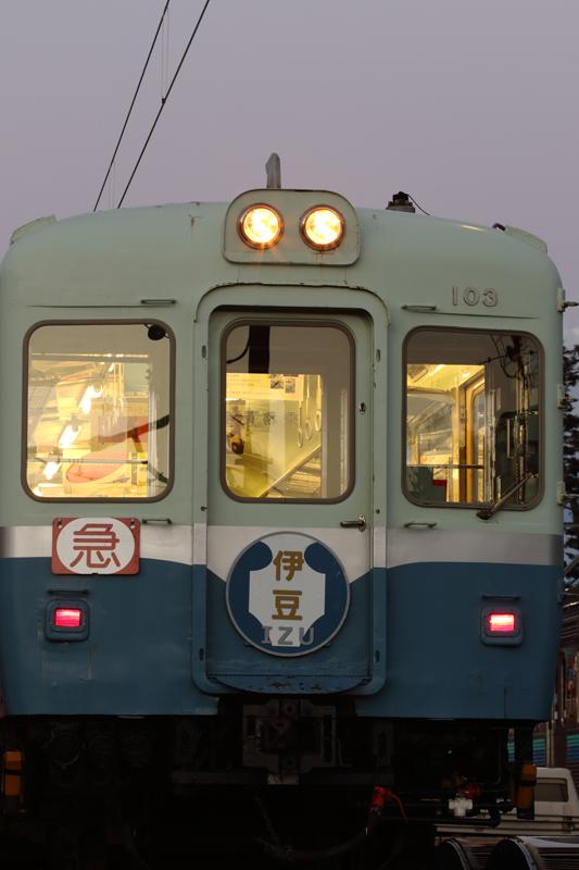 ED5A4480.jpg