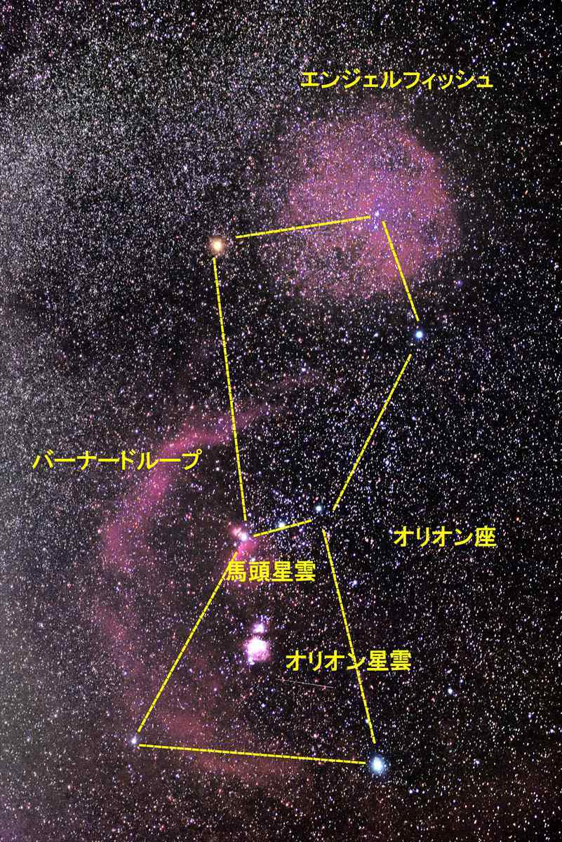 オリオン座周辺の星雲