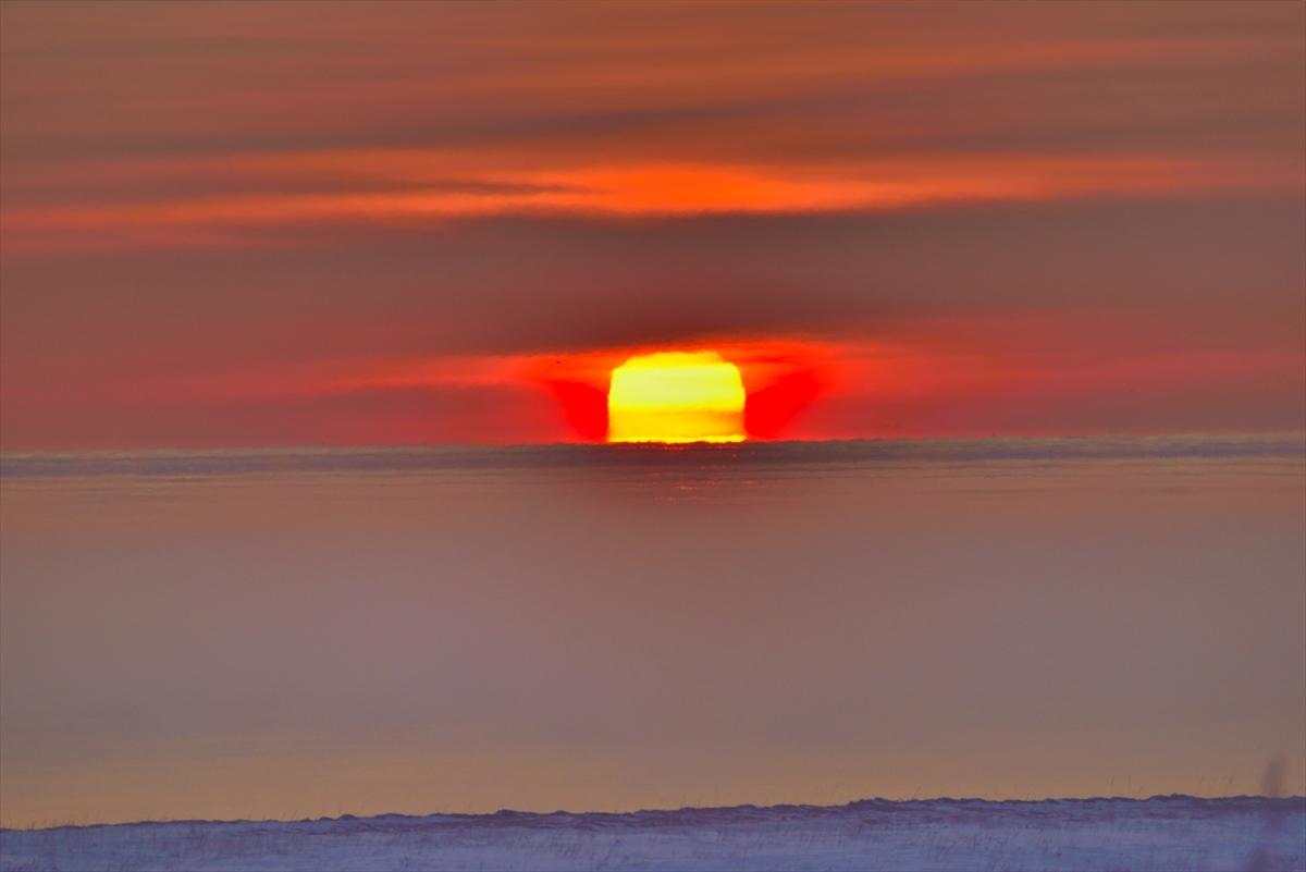 面白太陽1
