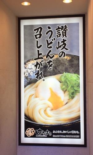 はなまるうどん中野通り店1