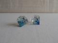 蝶の宝石1