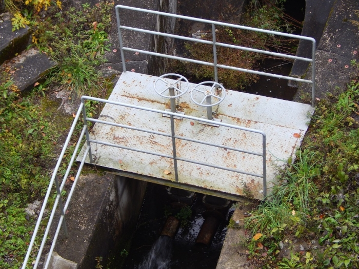 DSCN3514鵜の池