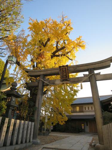 白山神社へ初詣+α-08