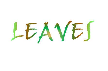 134_LEAVES.jpg