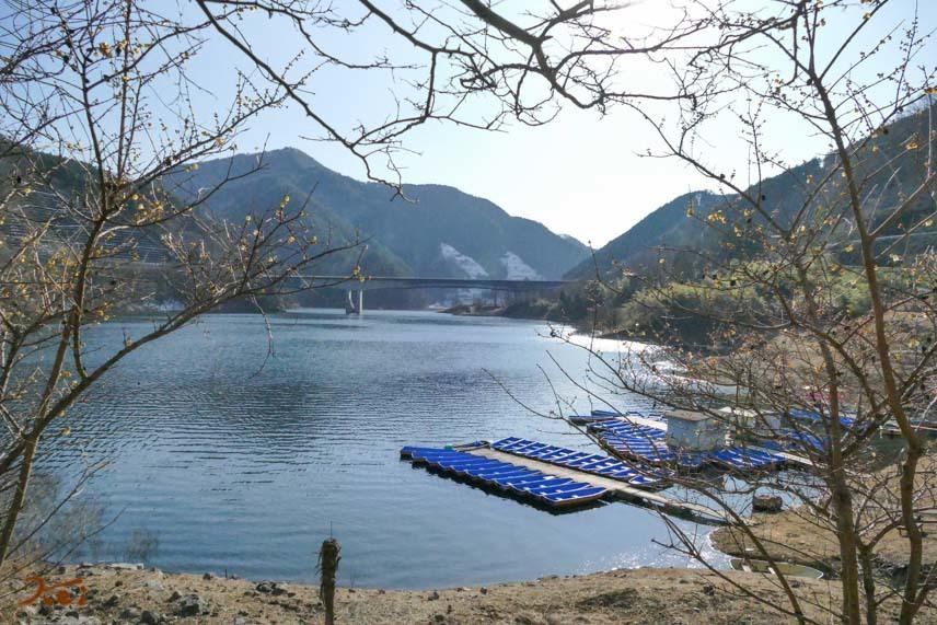 梅田湖ロウバイパーク06