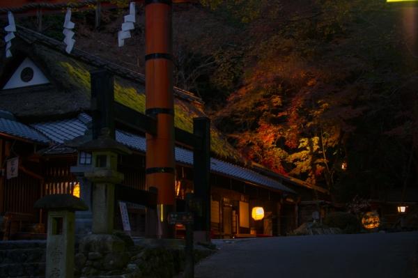 2016 hiranoya01
