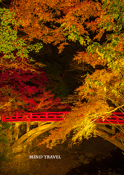西明寺 指月橋