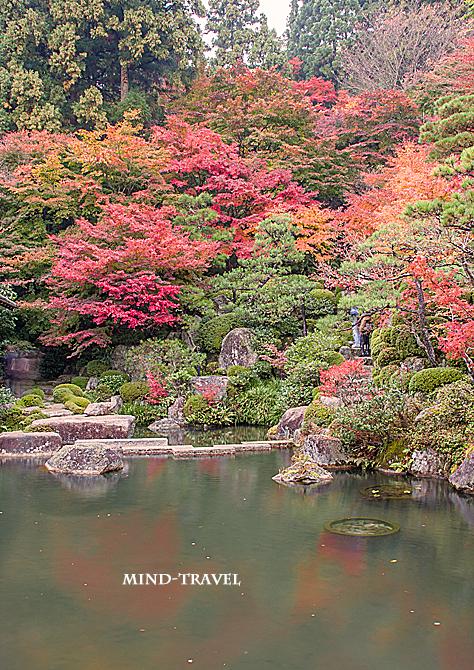 百済寺 池 紅葉