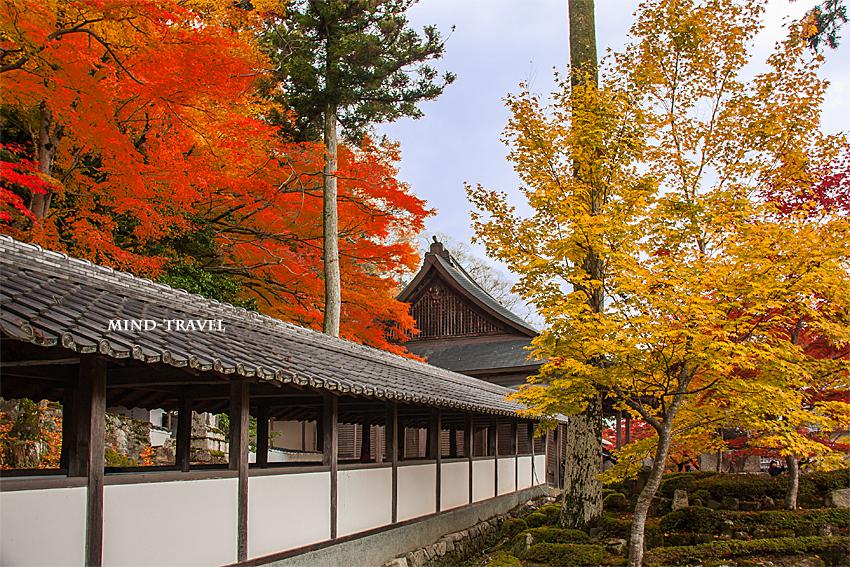 永源寺 渡り廊下 紅葉