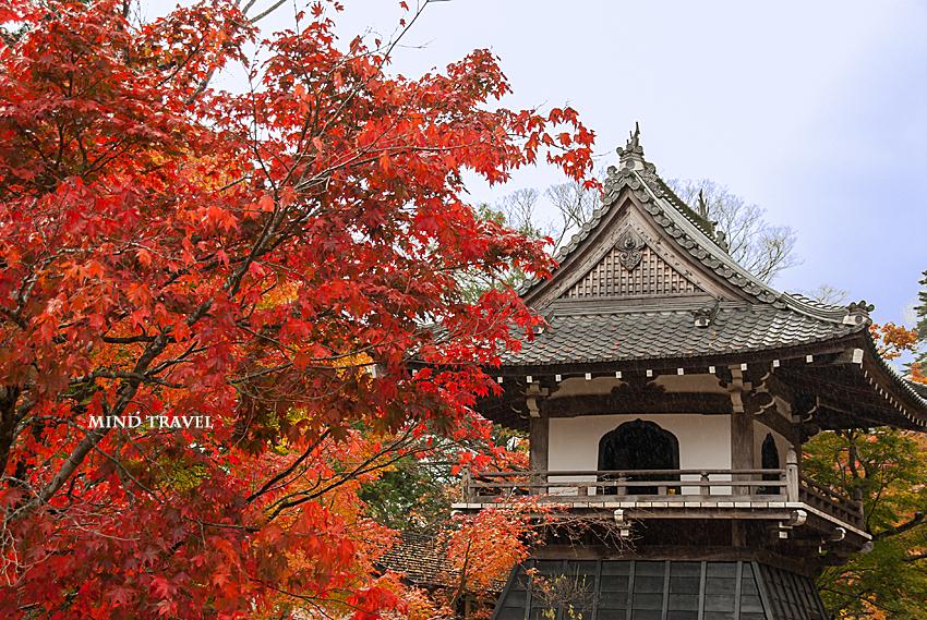 永源寺 鐘楼 紅葉