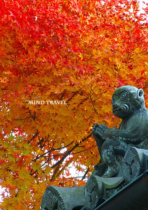 西教寺 猿の像 紅葉2