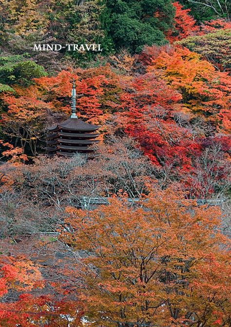 談山神社 紅葉3