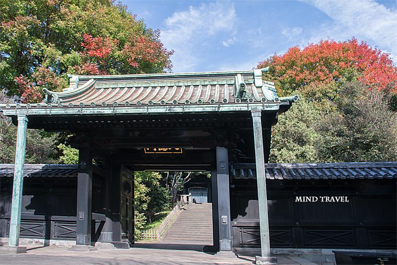 湯島聖堂 入徳門 紅葉
