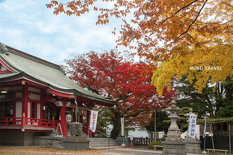 浦安 稲荷神社 紅葉