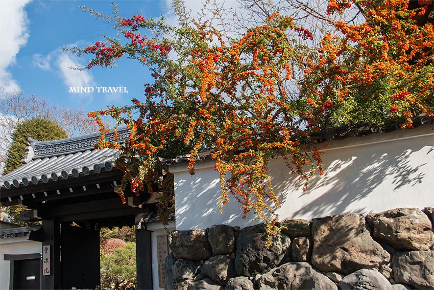 東福寺 霊源院