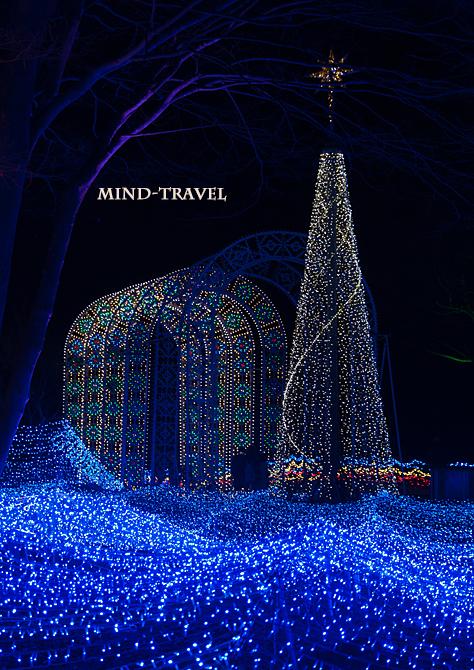 京都イルミエール クリスマスツリーとゲート